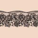 Abstract seamless lace pattern with flowers and butterflies. Stock Photos