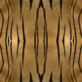 Abstract seamless natural background or texture. In oriental style based on tiger fur Royalty Free Stock Image