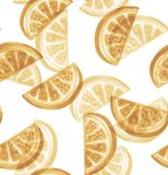 Abstract seamless pattern with citrus slices. Royalty Free Stock Image