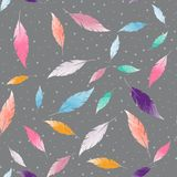Abstract seamless pattern with colorful feathers Royalty Free Stock Image