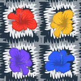 Abstract seamless pattern with colorful flowers and black white Royalty Free Stock Images