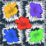 Abstract seamless pattern with colorful flowers and black white Stock Image