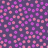Abstract seamless pattern of flowers on a purple background. For prints, cards, invitations, birthday, holidays, party, celebratio. N, wedding, Valentine's day Stock Photos