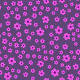 Abstract seamless pattern of flowers on a purple background. For prints, cards, invitations, birthday, holidays, party, celebratio. N, wedding, Valentine's day Royalty Free Stock Photography