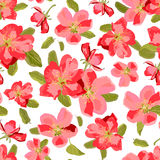 Abstract seamless pattern with  hand drawn flowers. Appl Royalty Free Stock Photo
