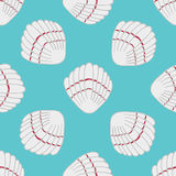 Abstract seamless pattern with hand drawn seashells. Stock Photography