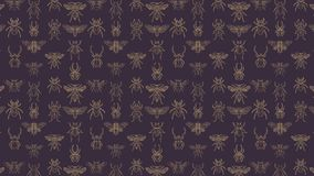 Abstract seamless pattern with insects stock video