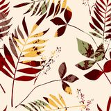Abstract seamless pattern with leaves. Vector background for various surface. Trendy hand drawn textures Stock Image