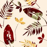Abstract seamless pattern with leaves. Vector background for various surface. Trendy hand drawn textures Stock Photography