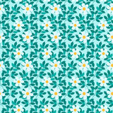 Abstract seamless pattern with leaves and flowers . Royalty Free Stock Photography