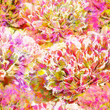 Abstract seamless pattern with peony flowers. Vector, EPS10 Stock Photography
