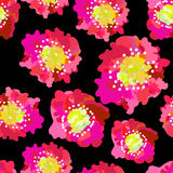 Abstract seamless pattern of pink poppies  on black background. Stock Photo