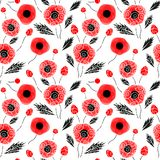 Abstract seamless pattern with a poppies. Abstract seamless pattern with a red poppies. Vector illustration Stock Photography