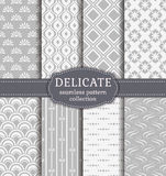 Abstract seamless patterns. Vector set. Universal seamless patterns in delicate white and gray colors. Set of backgrounds with abstract ornaments. Vector Vector Illustration