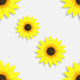 Abstract seamless wallpaper with sunflowers. Beautiful seamless background for your business Stock Photo