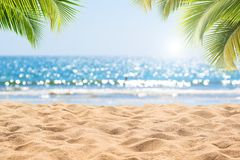 Free Abstract Seascape With Palm Tree, Tropical Beach Background. Royalty Free Stock Photo - 146142855