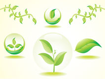 Abstract set of eco based green leafs. Vector illustration Royalty Free Stock Photos