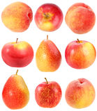 Abstract set of fresh red fruits Stock Photos
