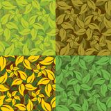 Abstract set of leaf patterns Royalty Free Stock Photography