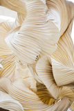 Abstract shapes of a paper ornamental object, like a sculpture royalty free stock photos