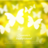 Abstract shining spring summer background with Royalty Free Stock Photography