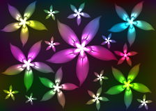 Abstract shone florets. Multi-coloured abstract flowers on a black background Royalty Free Stock Image