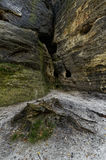 An abstract shot of rock formations. Slightly covered with moss in some areas Stock Photos