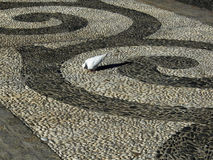Abstract sidewalk design with pigeon Royalty Free Stock Photos