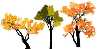 Abstract silhouette of trees Royalty Free Stock Photo