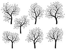 Abstract Silhouettes Of Spring Trees With Leaves. Royalty Free Stock Images