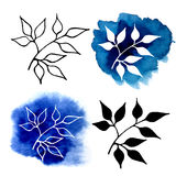 Abstract silhouettes of plants Royalty Free Stock Photo