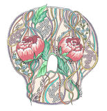 Abstract skull with peony flowers Stock Photo