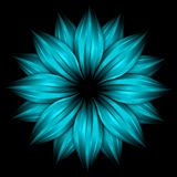 Abstract sky blue flower on black background Stock Photo