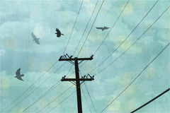 Abstract sky with crows. A telephone pole and an abstract teal blue sky with black crows flying above Stock Image