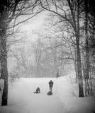 Abstract Sledding during snowfall Royalty Free Stock Photos
