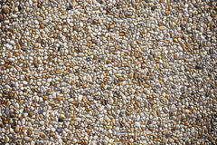Abstract - Small Pebbles Texture - Tiny Round Stones Royalty Free Stock Image