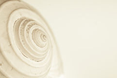 Abstract snail spiral Royalty Free Stock Photography