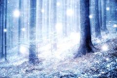 Abstract sneeuw boslandschap Royalty-vrije Stock Afbeelding