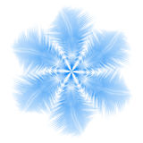 Abstract snowflake or flower combined by feathers Stock Photography