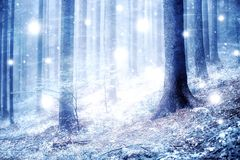 Abstract snowy forest landscape Royalty Free Stock Image