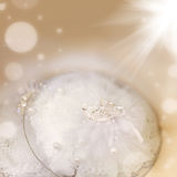 Abstract soft blur background wedding decoration Royalty Free Stock Photos