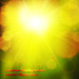 Abstract soft blurred bokeh effect background Stock Images