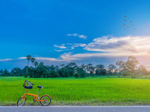 Abstract soft blurred and soft focus the silhouette of paddy rice field with the bicycle, the sunset, the beautiful sky and cloud. Abstract soft blurred and soft Stock Photography