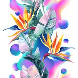 Abstract soft gradient blur, colorful fluid and geometric shapes, watercolor palm drawing. royalty free illustration