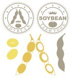 Abstract Soybean. Vector illustration EPS Royalty Free Stock Image