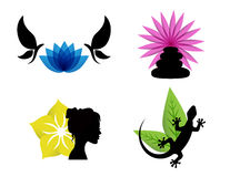 Abstract spa icons. With flowers, female silhouette, butterflies, lizards and stones Stock Images