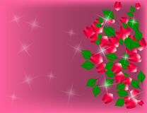 Abstract Sparkling Holiday Background with Rose Petals and Green. Leaves. Vector Illustration Stock Images