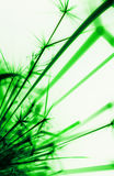 Abstract sparks. Abstract green sparks from metal grinding Stock Photo