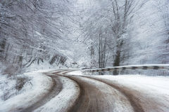 Abstract speed road  in winter forest Stock Photos