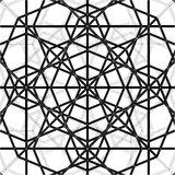 Abstract Spider Web Construction Structure Vector Stock Photography